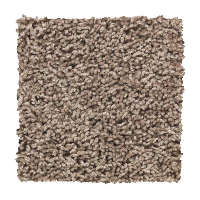 Carpet Alliance 2X03-837 GentleDoe