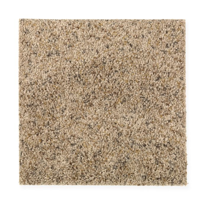 Carpet AmazingInspiration 1W81-545 ToastedAlmond