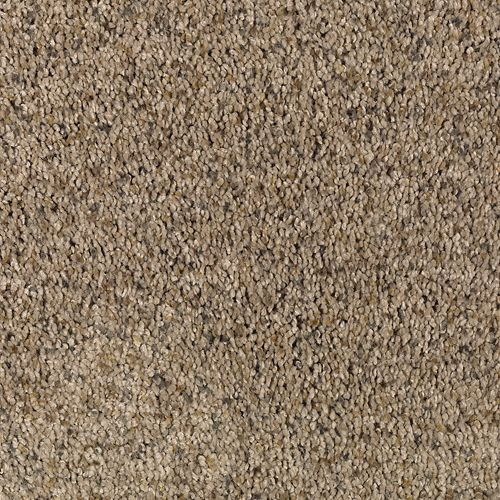 Carpet Amazing Inspiration Sepia Tone 547 main image