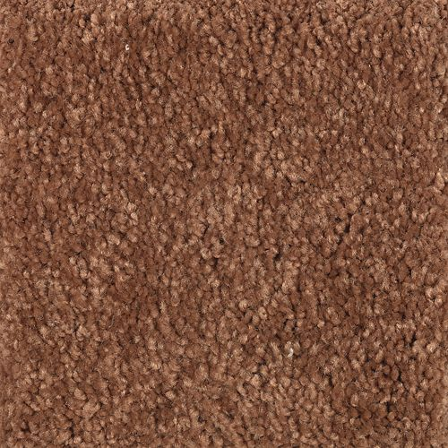 Carpet ArtandSoul 1W55-268 PumpkinSpice