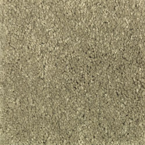 Carpet Art and Soul Botanical 661 main image