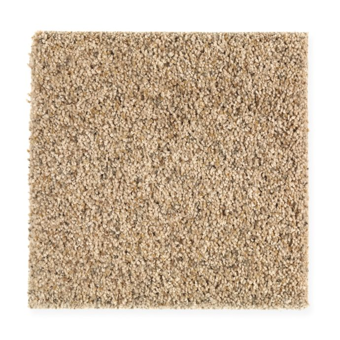 Carpet Contentment 1W23-541 Flaxen