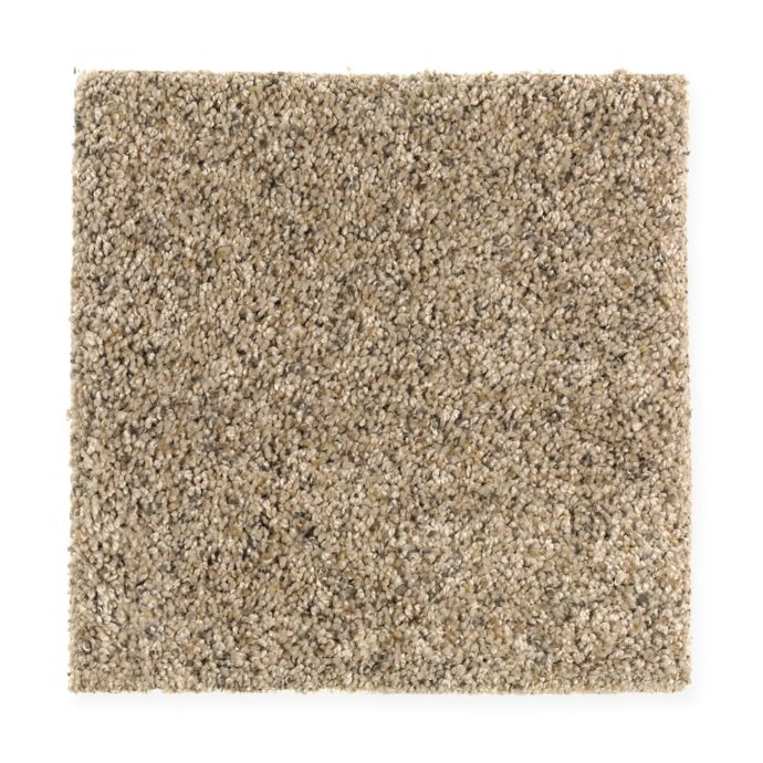 Carpet Contentment 1W23-545 ToastedAlmond