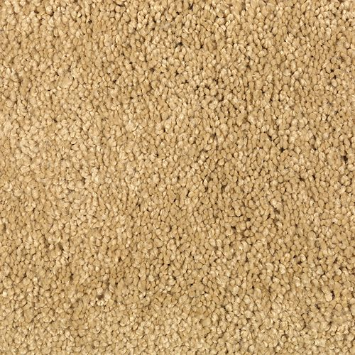 Carpet TrulyTenderIII 1W58-152 GoldNugget