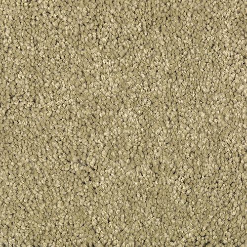 Carpet TrulyTenderIII 1W58-651 DriedHerb