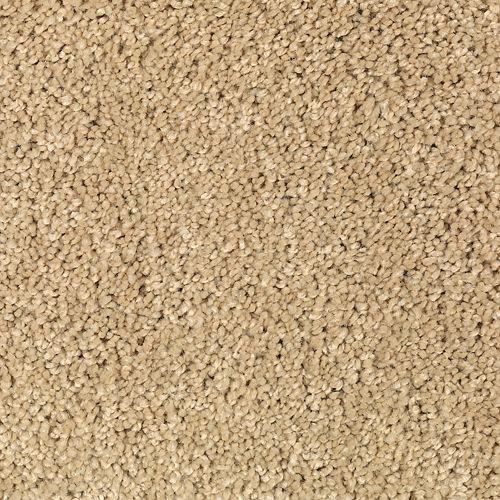 Carpet TrulyTenderIII 1W58-848 Kindling