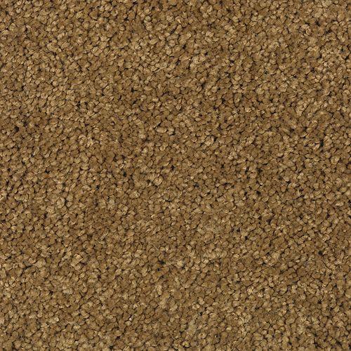 Carpet TrulyTenderIII 1W58-862 PolishedBrass