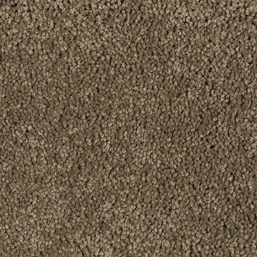 Carpet TrulyTenderIII 1W58-889 Boulder