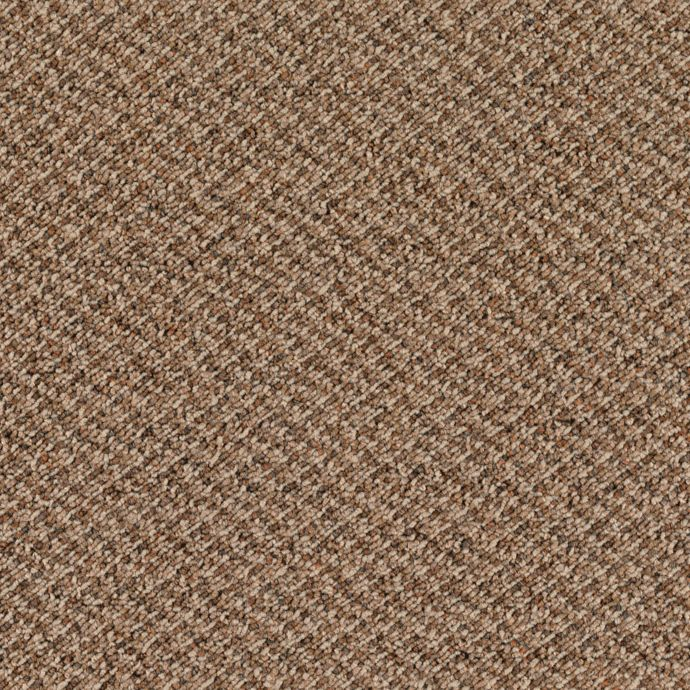Carpet Generator 2A21-852 CanyonEarth