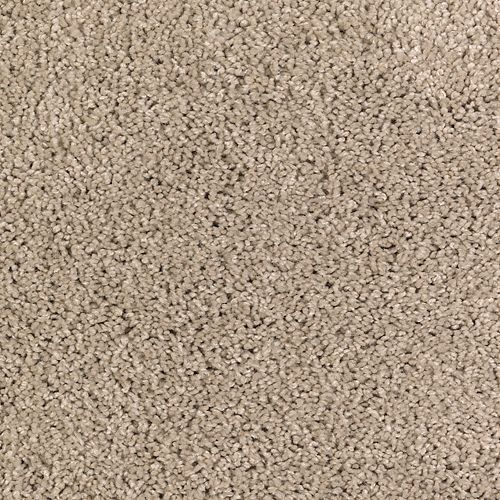 Carpet AbsoluteStyleSolid BP95A-507 WornLeatherSolid