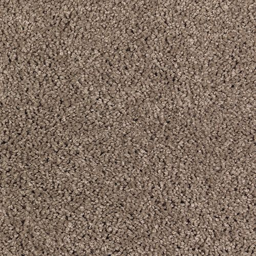Carpet AbsoluteStyleSolid BP95A-506 TimberlineSolid