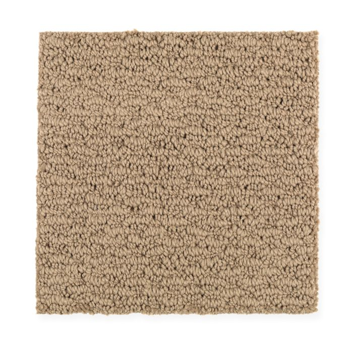 Carpet FreshSensation 1Z94-505 CanyonGlow