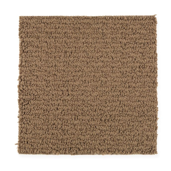 Carpet FreshSensation 1Z94-501 AutumnBrown