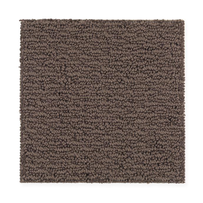 Carpet FreshSensation 1Z94-503 RichEarth