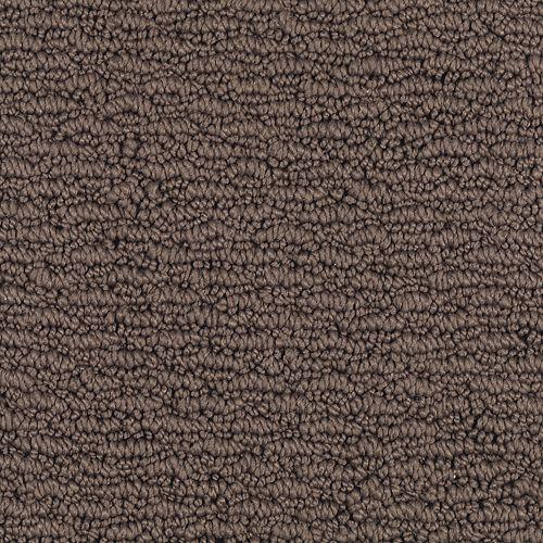 Carpet FreshSensation 1Z94-503 RichEarth