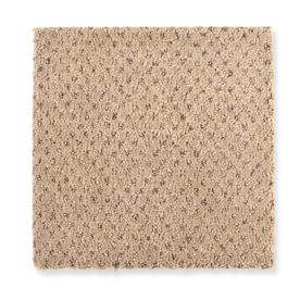 Carpet Beautifying 1Z82-507 Sandstone