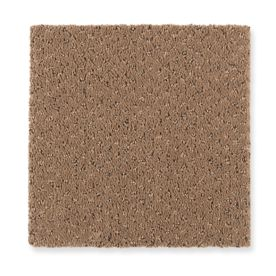 Carpet CalmingNature 1Z80-506 Buckskin