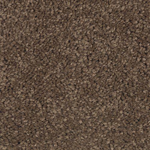Carpet Grande Vision Smores 534 main image