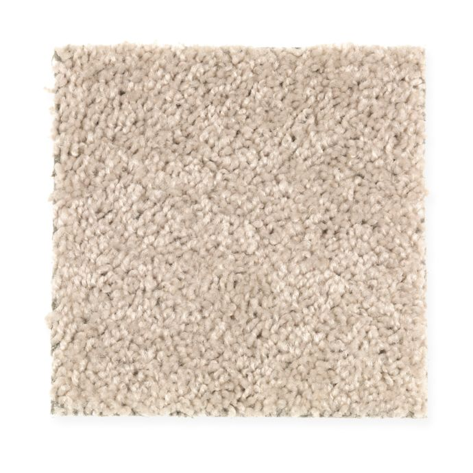 Carpet Avenger 2C52-727 Shoreline