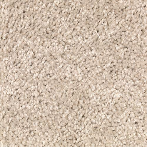 Carpet Avenger 2C52-727 Shoreline