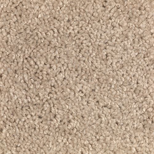 Carpet Avenger 2C52-751 SafariTan