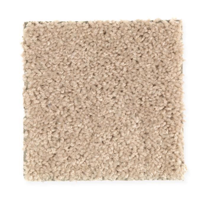 Carpet Avenger 2C52-833 WholeGrain