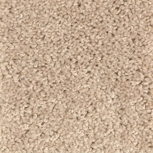 Carpet Avenger Whole Grain 833 main image