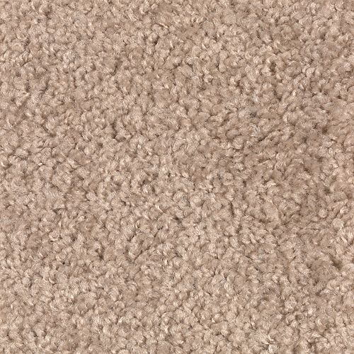 Carpet Avenger 2C52-862 BrownSugar