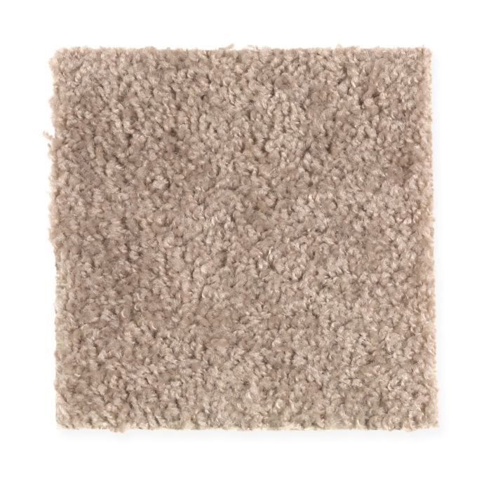 Carpet Avenger 2C52-864 Woodland