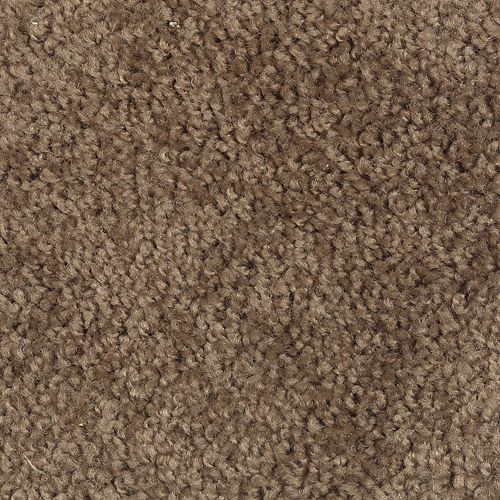 Carpet Avenger 2C52-878 Nutmeg