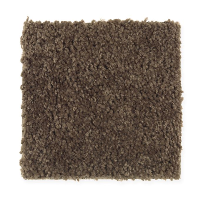 Carpet Avenger 2C52-888 CoffeeBean