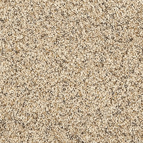 Carpet HealingTouch 2D62-508 Nutria