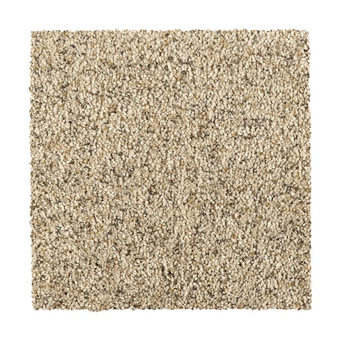 Carpet HealingTouch 2D62-509 Shoreline