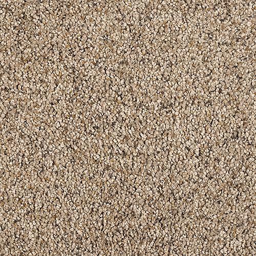 Carpet Healing Touch Driftwood 504 main image