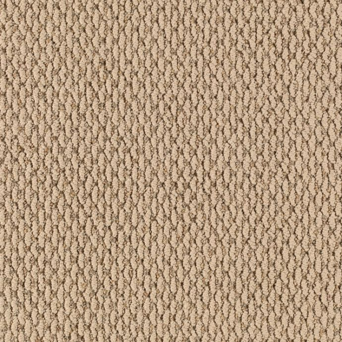 Carpet BeachView 2D60-502 Beachcomber