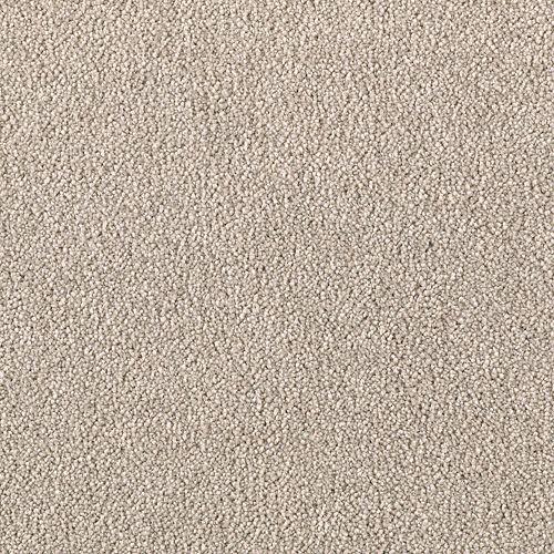 Mohawk Industries Common Values III Gun Smoke Carpet - East Brunswick, New Jersey - Carpets & More