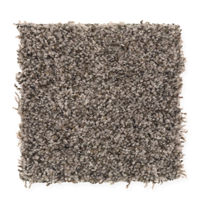 Carpet AmericanSpirit 2F89-859 WildFrontier
