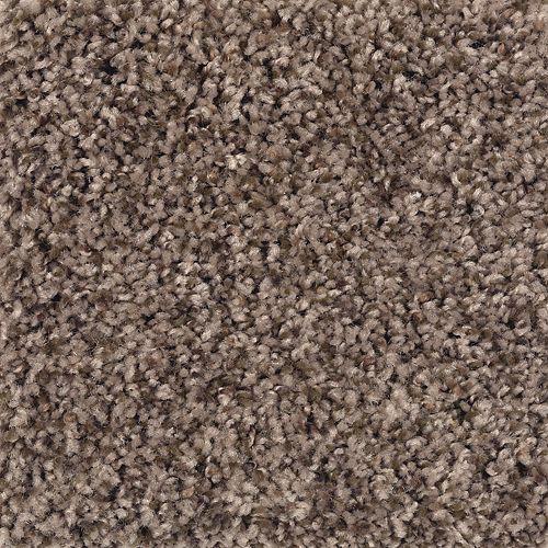 Mohawk Industries Enchanting Design Crumb Cookie Carpet