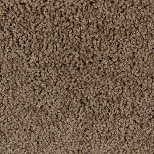 Carpet AuthenticHeritageSolid 2G41-505 ColonialBrown