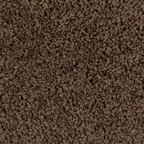 Carpet AuthenticHeritageSolid 2G41-504 PineCone