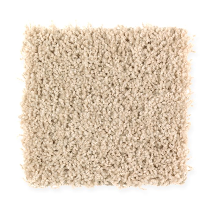 Carpet BrightOpportunity 2H89-541 WholeGrain
