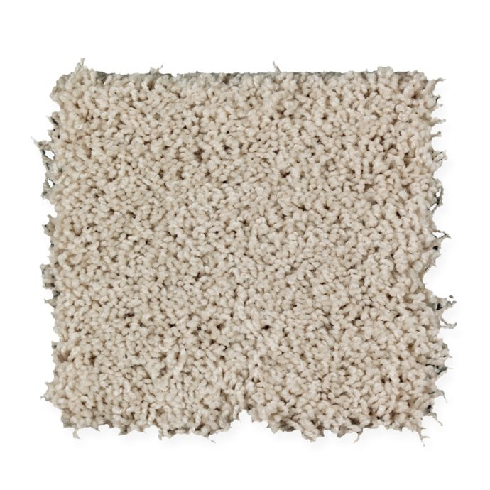 Carpet BrightOpportunity 2H89-501 WindChill