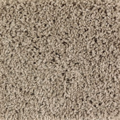 Carpet BrightOpportunity 2H89-532 SafariTan