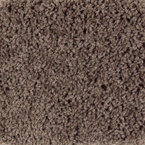 Carpet BrightOpportunity 2H89-548 PineCone