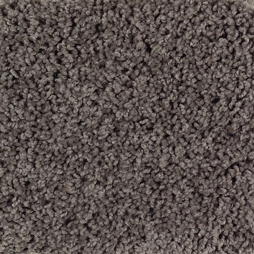 Carpet BrightOpportunity 2H89-508 DriedPeat