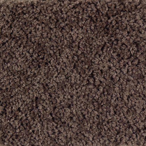 Carpet BrightOpportunity 2H89-549 CoffeeBean