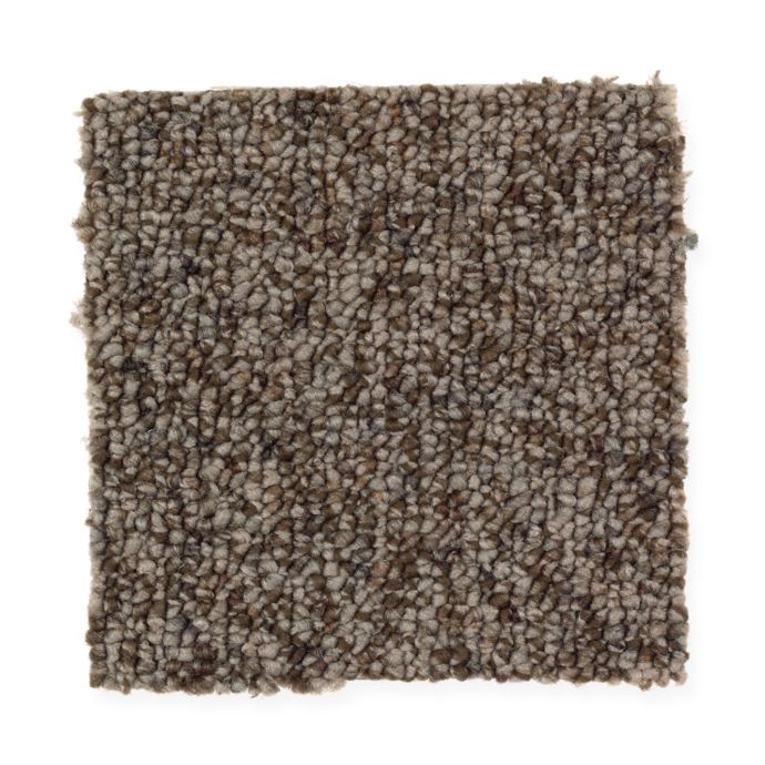 Carpet Brookside 2J20-858 BuffaloHide