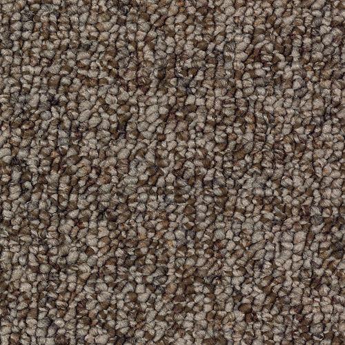Carpet Brookside 2J20-858 BuffaloHide