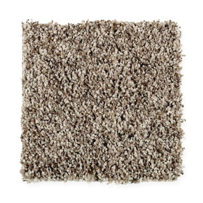 Gracefully Soft I Dried Peat 859