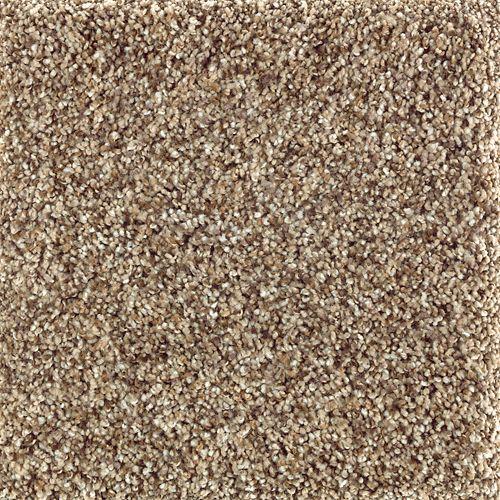 Mohawk Industries Nature S Luxury Ii Dried Sage Carpet